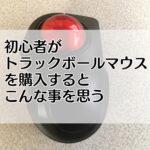 トラックボールマウスの購入レビュー「エレコム・M-MT2BRSBK」